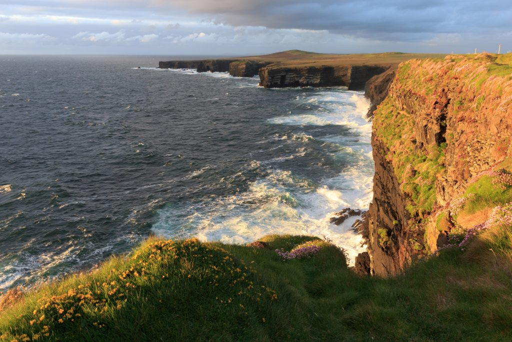 Loop Head cover photo-